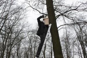 Akcja wieszania budek lęgowych w Parku 1000-lecia_083