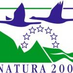 n2000