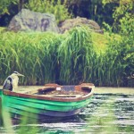 nature-bird-boat-river-large