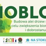 biobloki szort