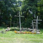 więtokrzyski Park Narodowy, Łysiec (Święty Krzyż. . Rabatki z wprowadzonymi gatunkami obcymi