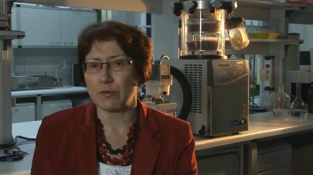 gmo-prof-ewa-rembialkowska